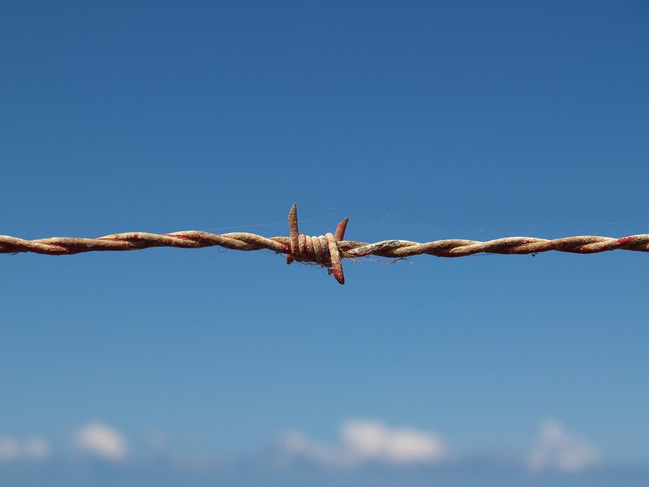 barbed wire, blood, refugees-1199172.jpg