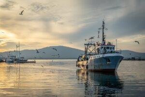 fishing vessel, fisherman, fishing-3855156.jpg